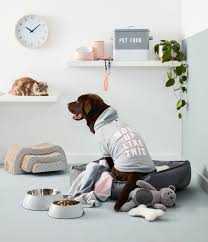 Kmart Dog Beds by 5 Stylish Ways To Make Your Pet Feel At Home