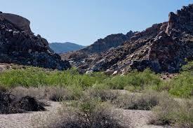Grapevine Canyon Trail