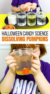 Pumpkin Books For Toddlers by Candy Pumpkins Super Fun Halloween Science For Kids
