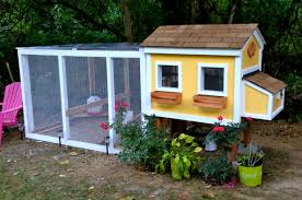 Chicken Coop Backyard Interior Design Study Building A Chicken Coop Kit W Additional Modifications Youtube Best 25 Portable Chicken Coop Ideas On Pinterest Coops Floor Space For And Runs Raising Plans 8 Mobile Coops Amazing Design Ideas Hgtv Pawhut Deluxe Backyard With Fenced Run Designs For Chickens Barns Cstruction Kt Custom Llc Millersburg Oh Buying Guide Hen Cages Wooden Houses Give Your Chickens Field Trip This Light Portable Pvc Diy That Are Easy To Build Diy