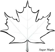 Maple Leaf Coloring Page Simple Printable Pages Leaves Fall