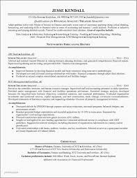 Business Analyst Sample Resume Finance Luxury As 30 Best For Banking And