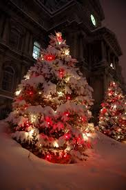 Red & While Christmas tree lights in snow Bookmark Your Local