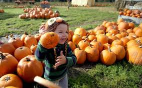 Seymour Pumpkin Festival Parking by Halloween Events The News Tribune