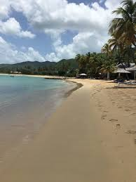 curtain bluff antigua oyster curtain bluff antigua oyster 100 images the best hotels