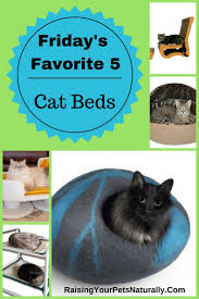 Kh Thermo Kitty Heated Cat Bed by Best 25 Heated Cat Bed Ideas On Pinterest Diy Cat Bed Cat