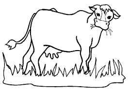 Cows Eat Grass Green Coloring Pages For Kids Printable