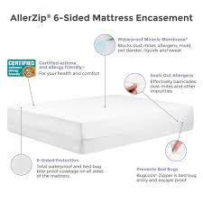 protect a bed allerzip allergy dust mite bed bug proof 6 sided