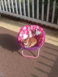 spiderman mini saucer chair walmart com