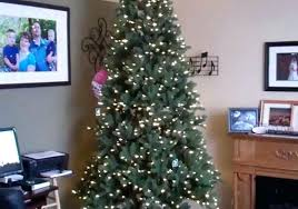 Genuine 10 Foot Christmas Tree Wonderful Home Inspiring 9 Ft Artificial In Fir Lit Local