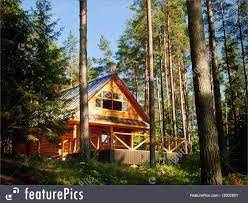 100 House In Forest Residential Architecture Wooden Log In The Sunny Forest