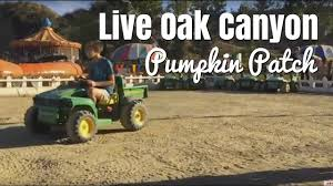 Oak Glen Pumpkin Patch Yucaipa by Live Oak Canyon Pumpkin Patch Youtube