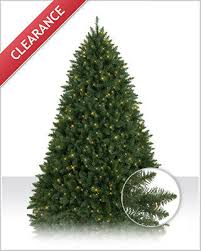 Christmas Tree Shop Danbury Ct by Connecticut River Pine Christmas Tree Christmas Tree Market