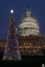 Best Type Of Christmas Tree Lights by Northern Lights Twinkle On The West Front Lawn Architect Of The