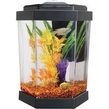 Amazon Petco Hex Freshwater Aquarium Aquarium Starter Kits