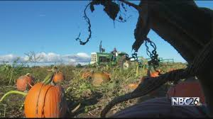Free Pumpkin Farms In Wisconsin by Exploring Wisconsin With Hayley Tenpas Cuff Farms Youtube
