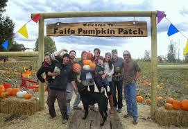 Nearby Pumpkin Patches by Falfa Pumpkin Patch Pumpkin Patches 54 County Rd 221 Durango