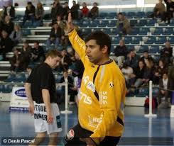 handzone toute l actualité du handball en français