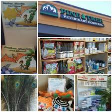 Pine Tree Veterinary Hospital - Home   Facebook 58 Off Valley Vet Coupon Promo Codes Retailmenotcom Oukasinfo Pet Supply Store Sckton Manteca Ca Carters Mart Welcome To Benjipet Sugar House Veterinary Hospital Vetenarian In Salt Lake City Ut Animal Medical Center Of Corona Your Friendly Vet For Your Coupon September 2018 Deals Northstar Vets Home 40 Military Discounts 2019 On Retail Food Travel More Promo Code Free Shipping Edreams Multi City Memorial Day Where Vets And Military Eat Get Discounts Flea Tick Coupons Offers Bayer Petbasics