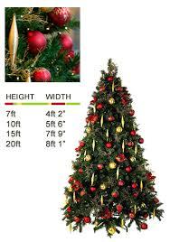 7ft Christmas Tree Uk by Our Range Of Christmas Trees Ambius Uk