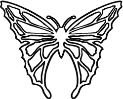 Butterfly Coloring Pages And Drawings More Fun