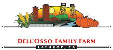 Del Oso Pumpkin Patch Lathrop Ca by Pumpkin Maze Dell Osso Family Farms