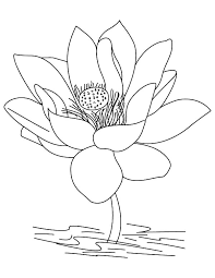 Beautiful Lotus Flower Coloring Pages
