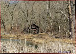 Shed Row Barns Virginia by Fields Nature Field Back Pond West Spring Wood Country Road Barn