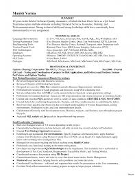 Sample Resume For Team Lead Position