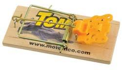 tom cat mouse trap tomcat mouse trap wooden 2pk livestock concepts