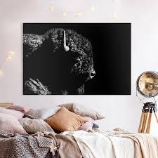 leinwandbild bison vor schwarz querformat 2 3