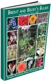 2016 free seed catalogs organic non hmo accessible gardens