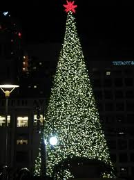 Plantable Christmas Trees Columbus Ohio by 76 Best Christmas Decorations Images On Pinterest Barbecue Grill