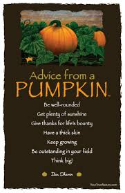 Wisconsin Pumpkin Patches 2015 by Best 25 Pumpkin Quotes Ideas On Pinterest Fall Time Quotes