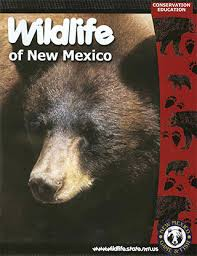Wildlife Of New Mexico Coloring Book Available Free In Print And PDF Formats From Conservation Education