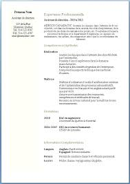 Ntaire Curriculum Vitae Template Acamic Formal Cv Format Good Samples Resume Word