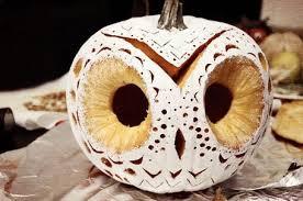 Cute Pumpkin Carving Ideas by Pumpkin Carving Designs Owl Pinterest