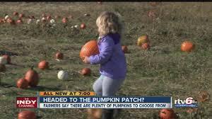 Portland Tn Pumpkin Patch by Pumpkin Patch Axs