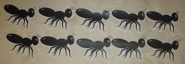 The Ants e Marching…Oh Crap