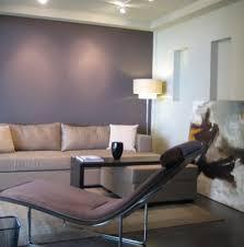 Soft Mauve Accent Wall Contemporary Living Room