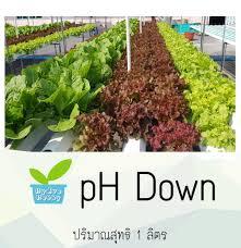 100 Ph Of 1 PH Down