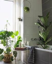 badezimmer vibe badezimmer badezimmerdeko pflanz