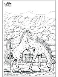 Coloring Pages Of Animals Horses Realistic Horse Packed With Wild