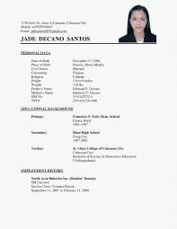 Bio Data Example Awesome Resume Sample Luxury Simple Within A Format