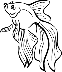 Realistic Tropical Fish Coloring Pages Page
