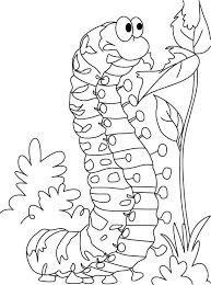 Leaf Coloring Pages For Preschool Elegant 40 Best Insecten Kleurplaten Images On Pinterest