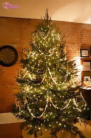 Cute Ideas For Garland Christmas Lights
