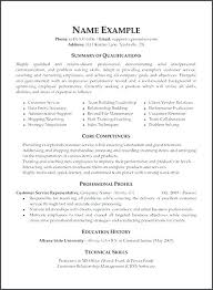 Director Of It Resume Resumes Samples Format In Word File