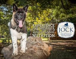 Do American Akitas Shed by Know Your Breed Akita Jock Dog Food