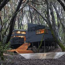 100 House In Forest The Northern California IGNANT